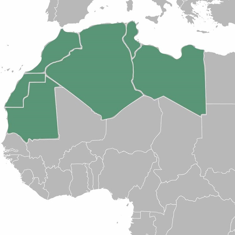 maghreb rencontre algerie thoune