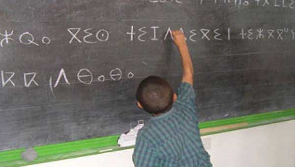 enseignants de Tamazight